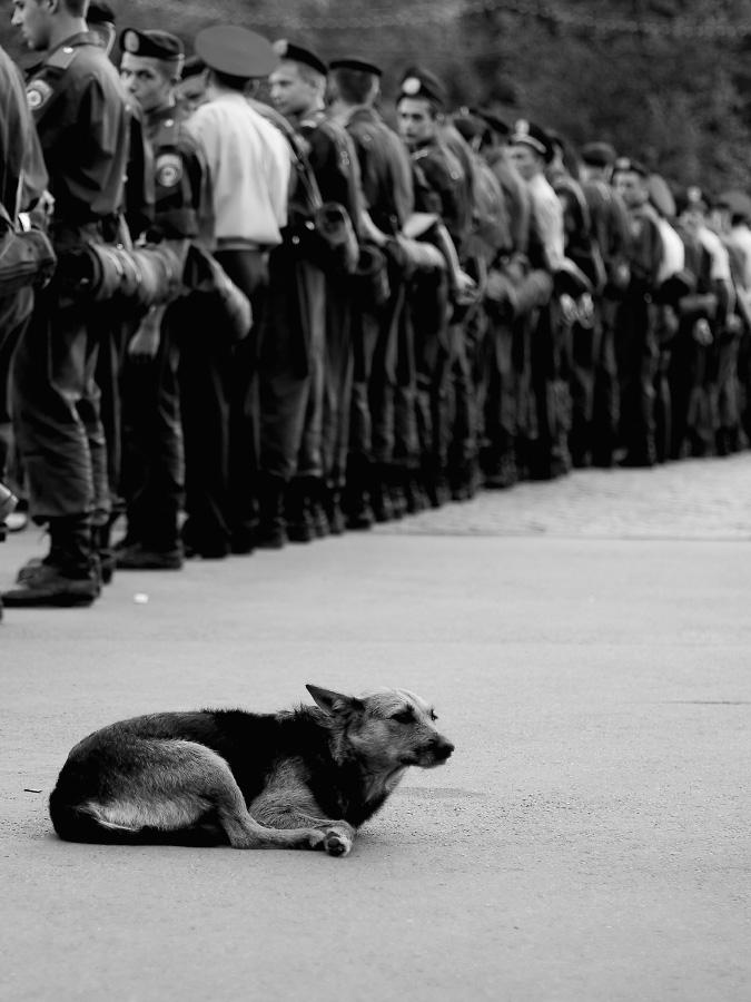 Харьков и харьковчане стрит-фото, жанровые фотографии Харькова