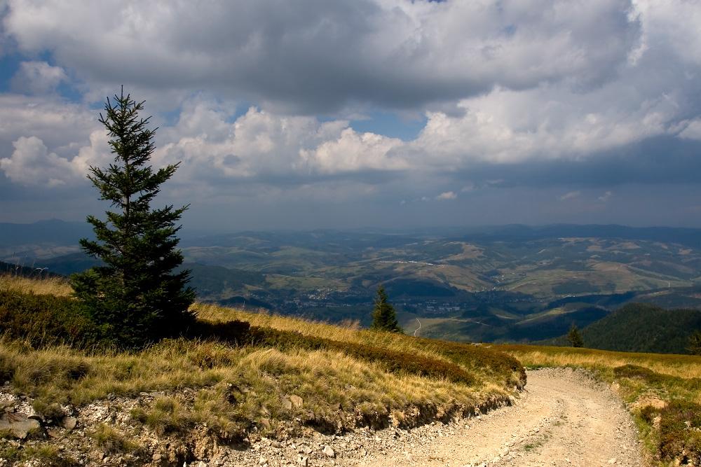 Гора Плай на Закарпатье Украина