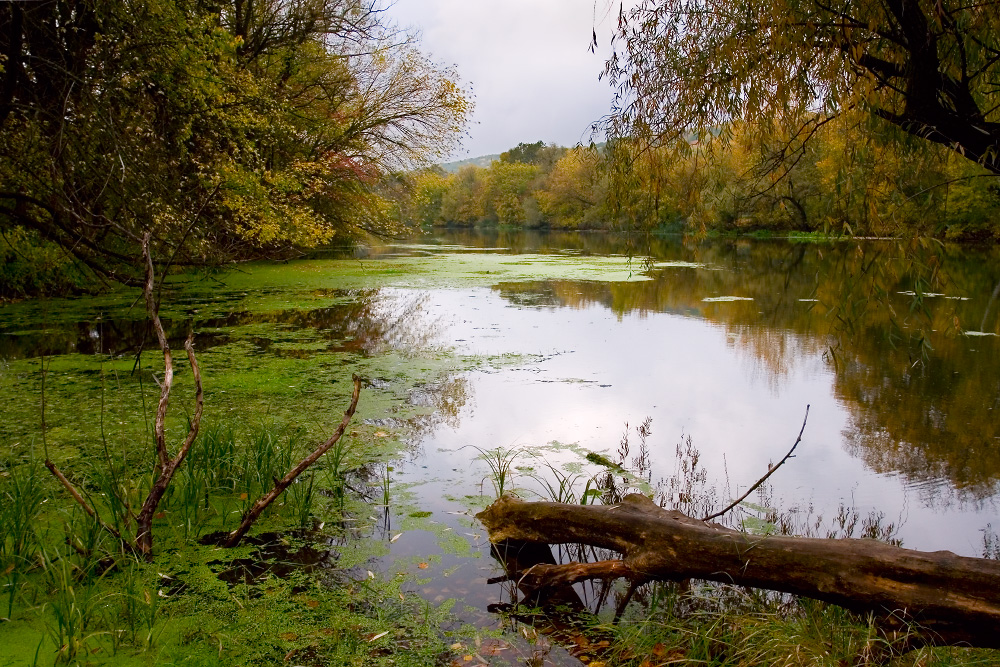 Река Северский Донец осенью Харьковская область
